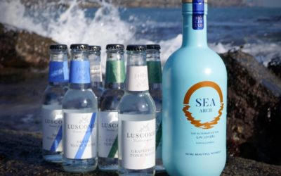 Win your own Sea &T bundle with 1 bottle of Sea Arch and a mixed case of 6 Luscombe Tonics. 3 bundles to be won.