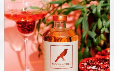Win A Bottle Of Mockingbird Spirit – Alcohol Free Tequila Alternative – Worth £22.99
