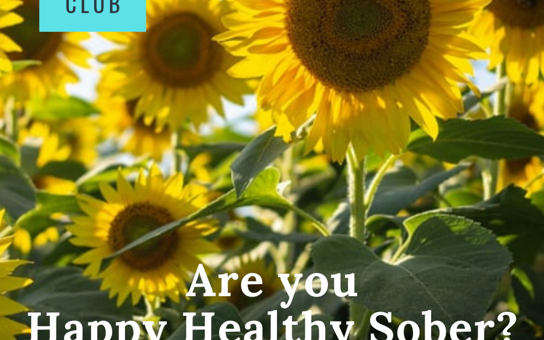 What makes you Happy Healthy Sober?